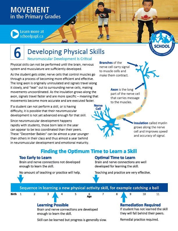 Movement in the Primary Grades: Developing Physical Skills