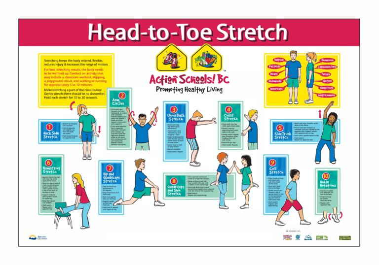 Action Schools! BC Head-to-Toe Stretch Poster